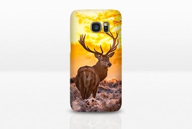 Cover Samsung Galaxy S7 Case