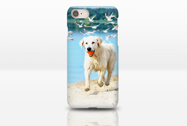 iPhone 8/SE Case